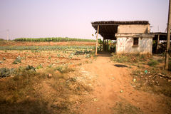 Poor Indian household farm. 7. Andhra Pradesh, Anantapur Stock Photography