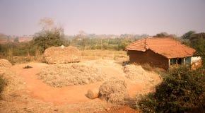 Poor Indian household farm. Andhra Pradesh, Anantapur. Poor Indian household farm. house and drying of hay. Andhra Pradesh, Anantapur Royalty Free Stock Photos