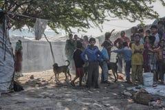 Poor kids at his home. Kids in slum near Patiala , Punjab India Royalty Free Stock Photos