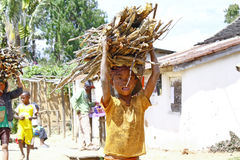 Poor malagasy boy carrying branches on his head - poverty. ANTSIRABE, MADAGASCAR, SEPTEMBER 2014, Unknown malagasy people carrying branches on heads - poverty Royalty Free Stock Photo