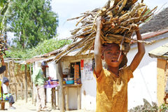 Poor malagasy boy carrying branches on his head - poverty. ANTSIRABE, MADAGASCAR, SEPTEMBER 2014, Unknown malagasy people carrying branches on heads - poverty Royalty Free Stock Image
