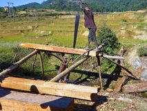 Poor malagasy men cutting timber Stock Image