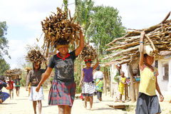Poor malagasy people carrying branches on heads - poverty. ANTSIRABE, MADAGASCAR, SEPTEMBER 2014, Unknown malagasy people carrying branches on heads - poverty Royalty Free Stock Photo