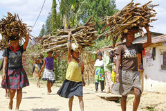 Poor malagasy people carrying branches on heads - poverty. ANTSIRABE, MADAGASCAR, SEPTEMBER 2014, Unknown malagasy people carrying branches on heads - poverty Stock Photos
