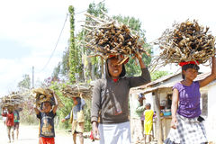 Poor malagasy people carrying branches on heads - poverty. ANTSIRABE, MADAGASCAR, SEPTEMBER 2014, Unknown malagasy people carrying branches on heads - poverty Stock Photo
