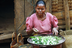 Poor Malagasy woman preparing food in front of cabin. Madagascar royalty free stock images