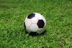 Poor man ball. Dirty ball on the grass royalty free stock photo