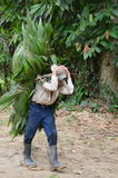 Poor man carrying leaves on his head. Poor working man carrying leaves on his head in Costa Rica Stock Photo