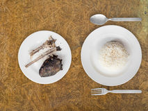 Poor meal of rice and fish bones. Stock Image