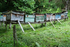 Poor old beehives. In one farm in Romania Royalty Free Stock Photo