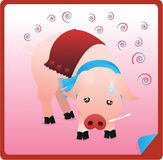 Poor Sick Pig. A poor pig with a flu wearing a scarf and holding a thermometer Stock Photo