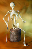 Poor skeleton royalty free stock photography