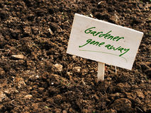 Poor soil gardener gone - abandoned allotment concept Royalty Free Stock Photos