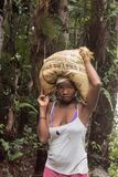 Poor young woman transporting crop on her head in Madagascar