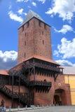 Poort in Namyslow Stock Afbeeldingen