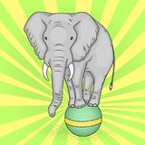 Pop art background, green sun rays. A circus elephant stands on a ball. The imitation of comic style. Vector. Illustration vector illustration