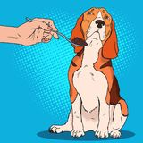 Pop Art Beagle Refuses to Eat. Sad Dog Doesnt Want to Take Food from Humans Hand. Vector illustration Royalty Free Stock Images