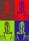 Pop art cactus royalty free stock photo