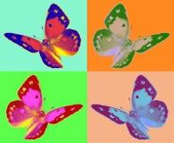 Pop-Art colias Schmetterling Lizenzfreie Stockfotografie