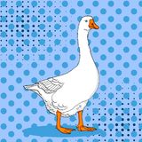 Pop art duck, goose, bird on a color blue background. Comic book style imitation. Vector Stock Images