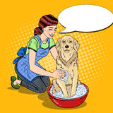Pop Art Happy Woman Washing Labrador Stock Photography