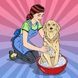 Pop Art Happy Woman Washing Their Dog Royalty Free Stock Photo