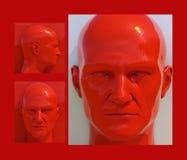 Pop Art Heads Royalty Free Stock Photography