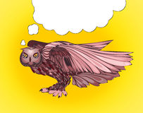 Pop Art illustration of owl with thought bubble Stock Photo