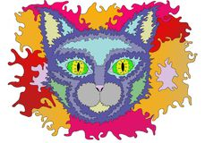Colorful fire cat in pop-art. Pop-art picture of a cat. Just made for beauty like the others true cat Royalty Free Stock Photos