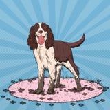 Pop Art Springer Spaniel Gullig smutsig hund vektor illustrationer