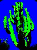Pop Art Style Giant Cactus. A giant cactus edited in the pop art style with vibrant neon greens and blue stock photography