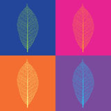 Pop-art style vector leaf skeletons Stock Photo