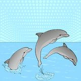 Pop Art. Vector of imitation retro comic style. Rest on the sea, three dolphins play in the water. Royalty Free Stock Images