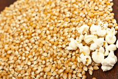Pop-corn and corn grain. Pop-corn and a lot of corn grain in background Royalty Free Stock Photography