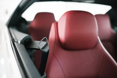 Pop out seat belts holder Stock Image