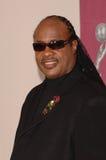Pop Stars,Stevie Wonder Royalty Free Stock Photography