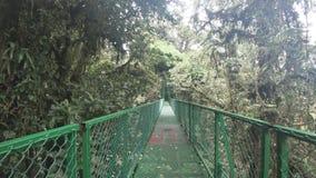 Walking on hanging bridge at natural rainforest in Costa Rica. POP view walking on hanging bridge at natural rainforest in Costa Rica stock video