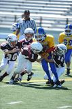 Pop Warner Football Royaltyfri Fotografi