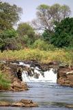 Popa Falls på den Okavango floden arkivbilder