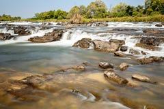 Popa famoso cai em Caprivi, Namíbia norte Imagem de Stock Royalty Free