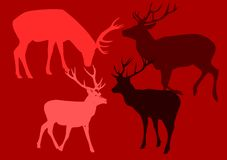 Popart deers. Royalty Free Stock Image