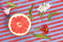 Popart projektuje czerwony grapefruitowego na pasiastego tła odgórnym widoku Zdjęcie Royalty Free