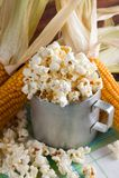 Popcorn μέσα στο παλαιό φλυτζάνι με διάφορα corncobs Στοκ εικόνες με δικαίωμα ελεύθερης χρήσης