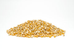 Popcorn σπόροι Στοκ Εικόνες