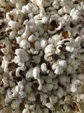 Popcorn στοκ φωτογραφίες