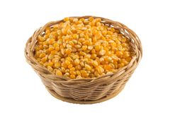 Popcorn corn. Raw grain in a bowl Royalty Free Stock Photo