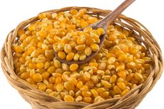 Popcorn corn. Raw grain in a bowl Royalty Free Stock Photography
