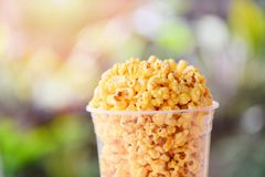 Popcorn in cup and nature green and sunlight backgroubd - Sweet butter popcorn salt stock photo