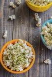 Popcorn di Furikake Fotografia Stock Libera da Diritti