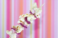 Popcorn and flower petals on a Stock Photography